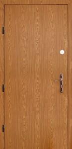 Дверь с ламинат покрытием № 1
